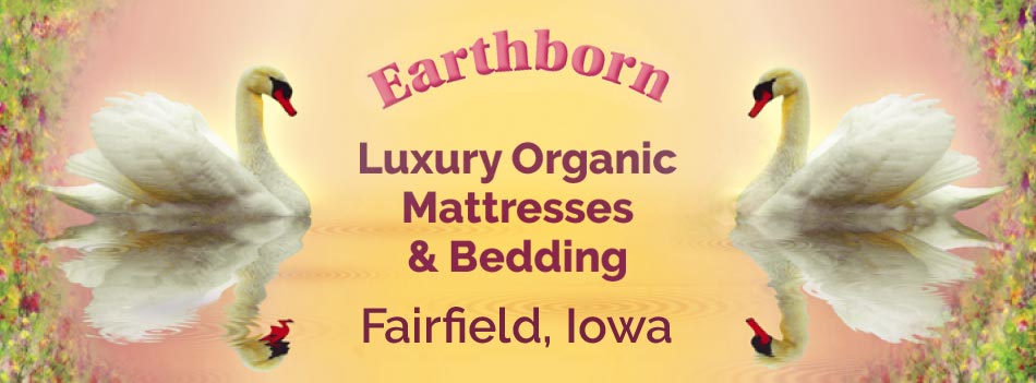 The Earthborn Bedroom — Luxury Organic Mattresses / Fairfield, Iowa